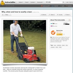 Why, when and how to scarify a lawn