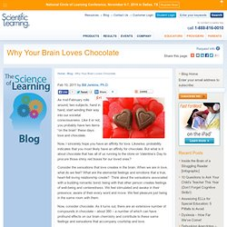 Why Your Brain Loves Chocolate
