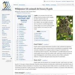 Wikijunior Gli animali del bosco/Il gufo - Wikibooks, manuali e libri di testo liberi
