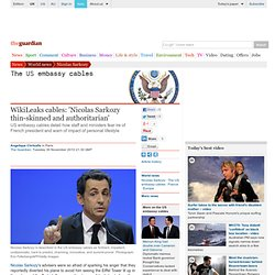 WikiLeaks cables: 'Nicolas Sarkozy thin-skinned and authoritarian'