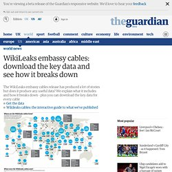 WikiLeaks embassy cables: download the key data and see how it breaks down