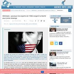 Wikileaks : pourquoi les experts de l'ONU exigent la liberté pour Julian Assange