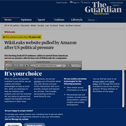 WikiLeaks website pulled by Amazon after US political pressure | Media
