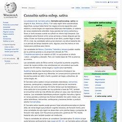 Cannabis sativa subsp. sativa
