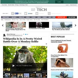 Wikipedia Is In A Pretty Weird Battle Over A Monkey Selfie