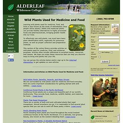 Wild Plants Used for Medicine and Food