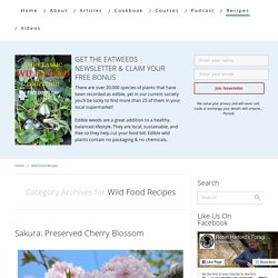 Wild Food Recipes Archives - Eatweeds