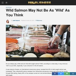 Wild Salmon May Not Be As 'Wild' As You Think