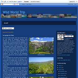 Wild World Trip: Les gorges de Vikos