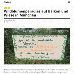 Wildblumenparadies auf Balkon und Wiese in München