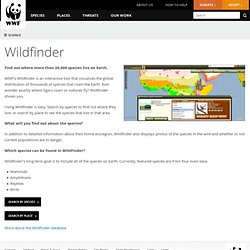 Wildfinder | Pages