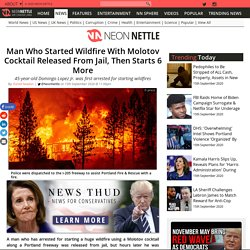 Man Who Started Wildfire With Molotov Cocktail Released From Jail, Then Starts 6 More