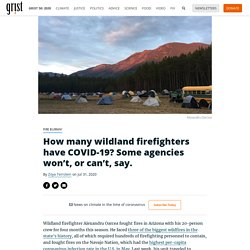 How many wildland firefighters have COVID-19? Some agencies won't, or can't, say. By Zoya Teirstein on Jul 31, 2020