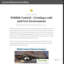 Wildlife Control – Creating a safe and Free Environment – greenvalleypestcontrolblog
