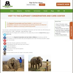 Welcome to Wildlife SOS – Visit To The Elephant Conservation and Care Center