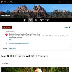 NPS_GOV 24/09/19 Lead Bullet Risks for Wildlife & Humans