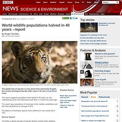 BBC News - World wildlife populations halved in 40 years - report