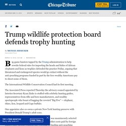 Trump wildlife protection board defends trophy hunting