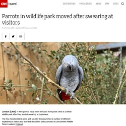 Parrots in British wildlife park moved after swearing at visitors