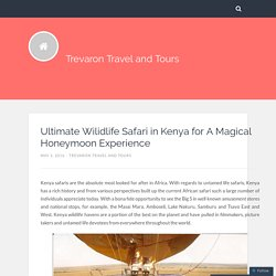 Ultimate Wilidlife Safari in Kenya for A Magical Honeymoon Experience – Trevaron Travel and Tours