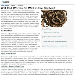 Will Red Worms Do Well in the Garden?