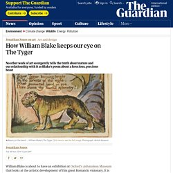 How William Blake keeps our eye on The Tyger
