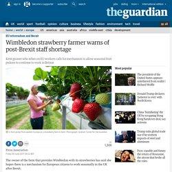 Wimbledon strawberry farmer warns of post-Brexit staff shortage