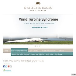 Fish and wind turbines don't mix