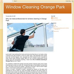 Why we need professionals for window cleaning in Orange Park