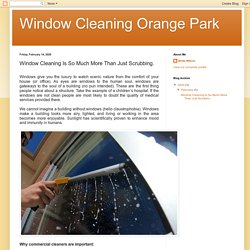 Window Cleaning Is So Much More Than Just Scrubbing.