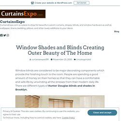 Window Shades and Blinds Creating Outer Beauty of The Home – CurtainsExpo