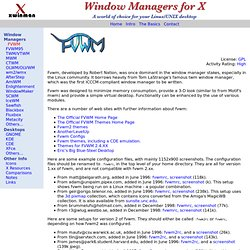 Window Managers for X: FVWM