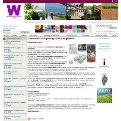 L'oenotouriste géologue en Languedoc
