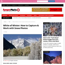 White of Winter: How to Capture & Work with Snow Photos