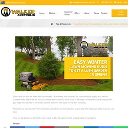 Easy Winter Lawn Mowing Guide to Get a Lush Garden in Spring