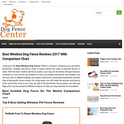 Best Wireless Dog Fence 2017 Reviews With Comparison Chart