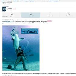 Wireshark — приручение акулы / Блог компании Pentestit