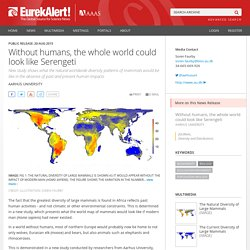 Without humans, the whole world could look like Serengeti