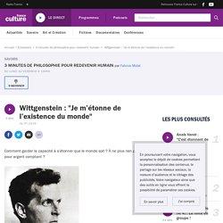 """Wittgenstein : """"Je m'étonne de l'existence du monde"""""""