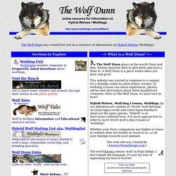 The Wolf Dunn (hybrid wolf / wolf-dog cross info)