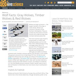 Wolf Facts: Gray Wolves, Timber Wolves & Red Wolves