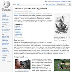 Wolves as pets and working animals