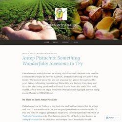 Antep Pistachio: Something Wonderfully Awesome to Try – WhereIsMyPistachio