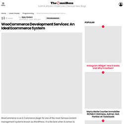 WooCommerce Development Services: An Ideal Ecommerce System