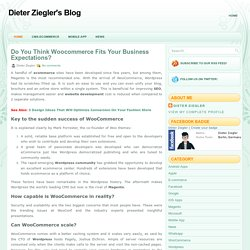 Do You Think Woocommerce Fits Your Business Expectations? ~ Dieter Ziegler's Blog