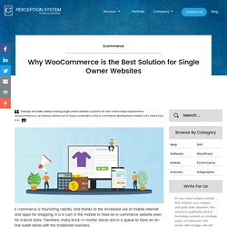 Why WooCommerce is the Best Solution for Single Owner Websites