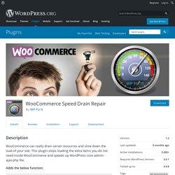 WooCommerce Speed Drain Repair