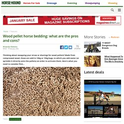 HORSEANDHOUND 09/02/16 Wood pellet horse bedding: what are the pros and cons?