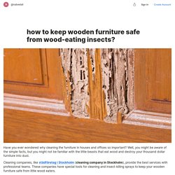 how to keep wooden furniture safe from wood-eating insects?