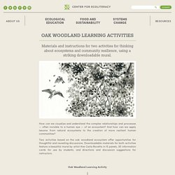 Oak Woodland Learning Activities